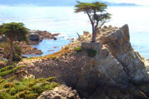 landscape nature sea