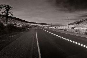 landscape nature sepia road