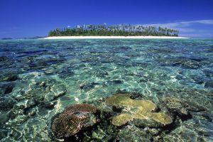landscape nature tropical island
