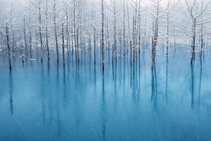landscape pond winter blue trees nature white snowing reflection water snow reflection