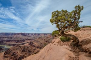 landscape rock utah nature