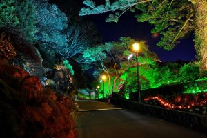 lantern garden landscape street