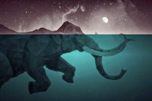 low poly moon artwork split view sea water elephant
