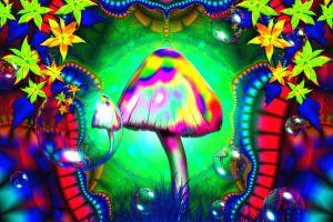 lsd psychedelic mushroom colorful