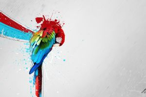 macaws simple background artwork paint splatter colorful digital art animals parrot abstract