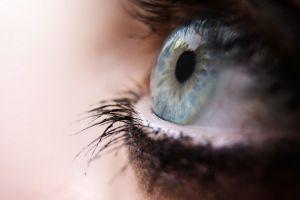 macro blue eyes eyelashes eyes