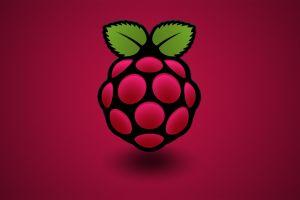 minimalism fruit rasberry pi minimalism red background
