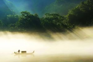 mist boat reflection sunlight trees forest