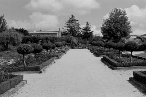 monochrome old garden photography vintage