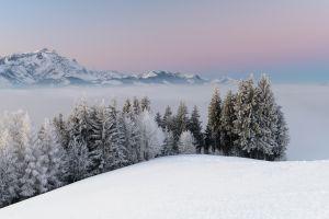 mountains nature snow winter landscape forest mist