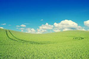 nature clouds field