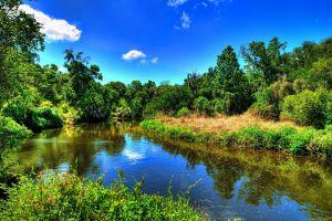 nature colorful landscape river