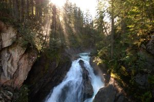 nature forest sun rays water landscape waterfall trees sun