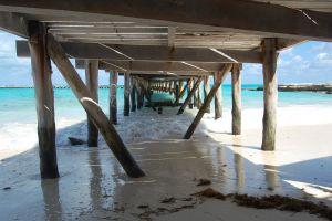 nature landscape beach pier sea