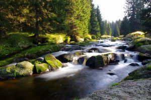 nature landscape river water