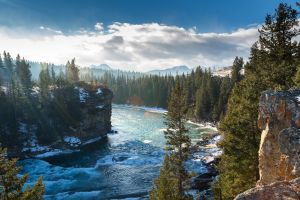 nature landscape trees snow river waves pine trees clouds mist canada ice