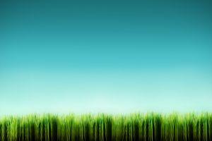 nature minimalism grass green digital art sky
