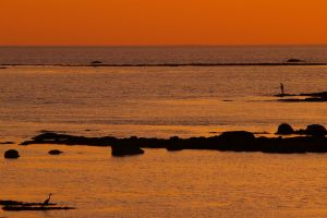 nature sea horizon landscape sky sunset
