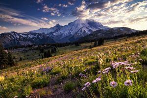 nature sky landscape mountains flowers