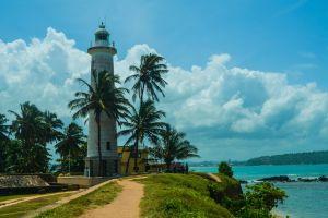 nature sky lighthouse palm trees sea clouds