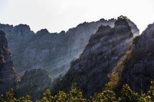 nature trees sun rays mountains landscape