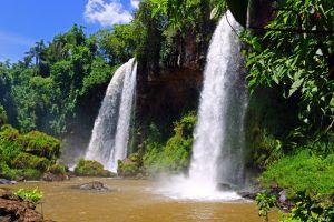 nature waterfall jungle