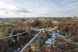 netherlands dune nature path