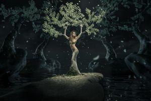 night fantasy girl women digital art nature fantasy art trees