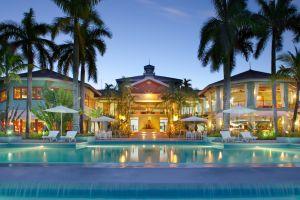 palm trees hotel swimming pool