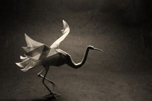 paper photography artwork origami