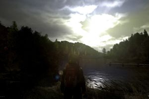 pc gaming screen shot dayz