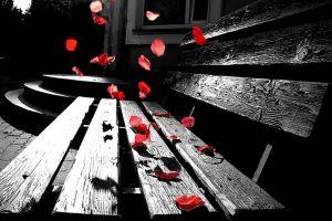 petals leaves selective coloring sad