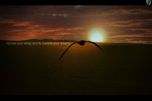 photo manipulation typography fly photoshop landscape flying sunset animals birds sunlight