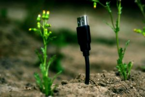 plants humor usb technology macro