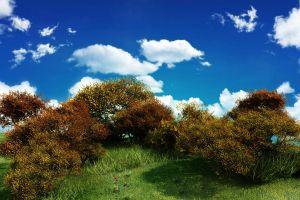 plants landscape clouds sky nature