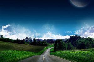 plants landscape road sky