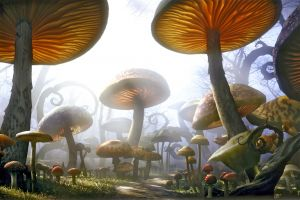 plants render fantasy art mushroom nature digital art