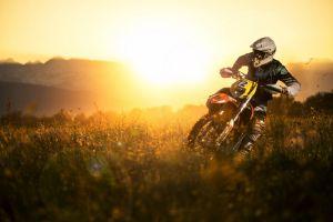 plants sport  numbers racing motocross vehicle sunlight
