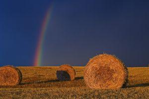 rainbows haystacks sunlight field