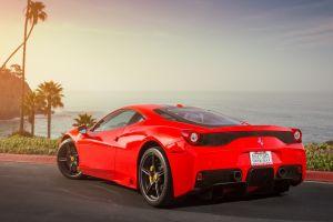 red cars palm trees vehicle car ferrari
