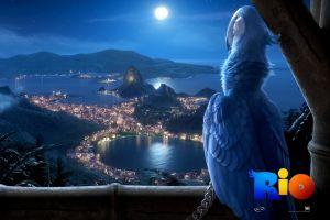 rio (movie) animated movies movies