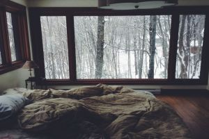 room trees window winter bed pillow forest