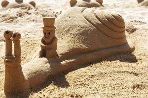 sand castle beach sand snail