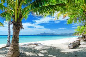 sea beach landscape tropical