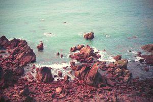 sea nature coast rock