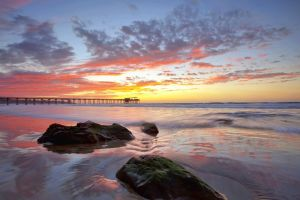 sea sunlight beach sky horizon pier