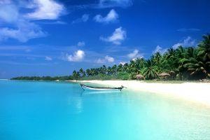 sea tropical palm trees boat beach