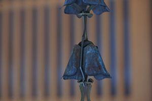 simple background bokeh simple blue blossoms metal