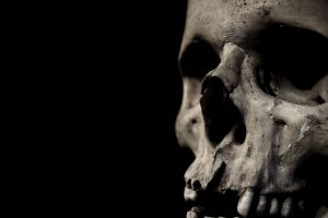 simple background dark bones black background skull