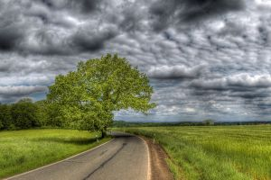 sky clouds road trees landscape